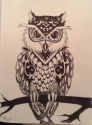 owl 92x125 2014 Cover Contest