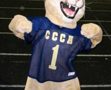 Cody the Cougar